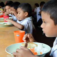 The Parliamentary Front Against Hunger and School Feeding Programmes